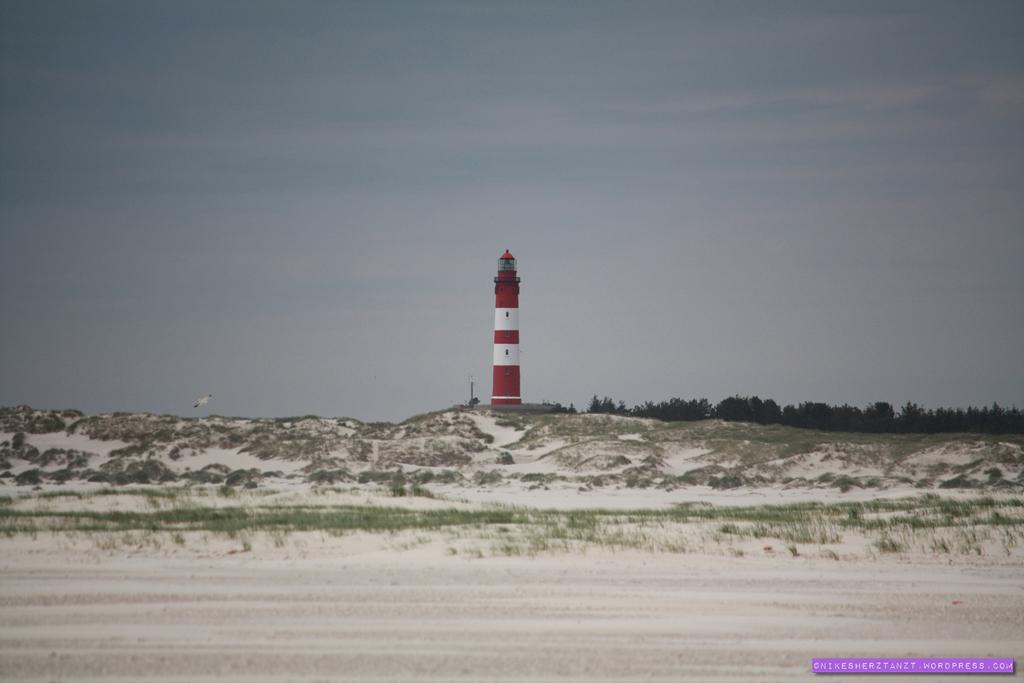 amrum, nordsee, wattenmeer, insel, meer, schleswig-holstein, hallige, kniep, strand, sand, leuchtturm, dünen, nikesherztanzt