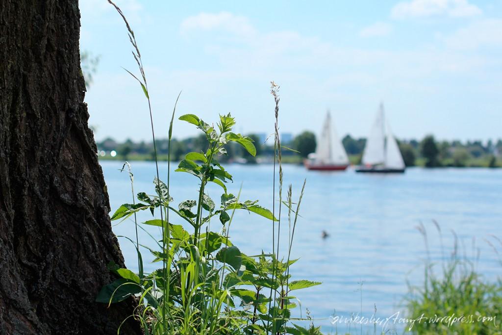 segeln in roermond, niederlande, holland, sonnenschein, himmelblau, https://nikesherztanzt.de