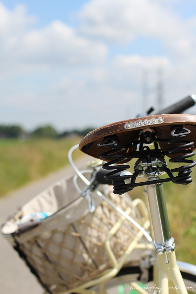 foto der woche, 26, fee, juli, fahhrad, bike, specialized, globe, 8 roll, brooks