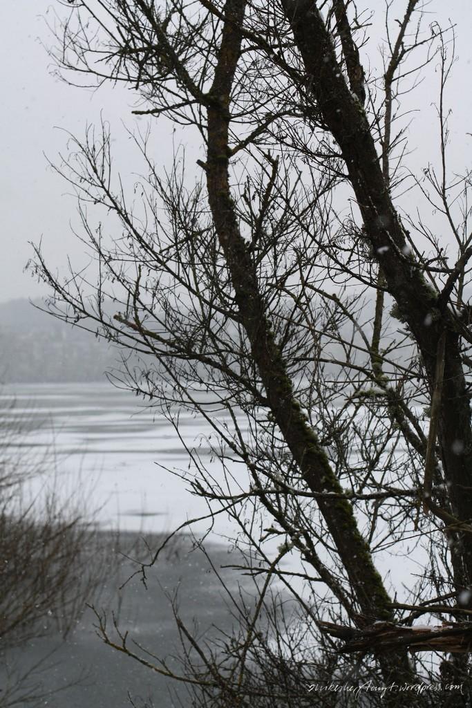 wiesensee, westerwald, rheinland-pfalz, travel, wanderlust, roadtrip, stahlhofen, nikesherztanzt
