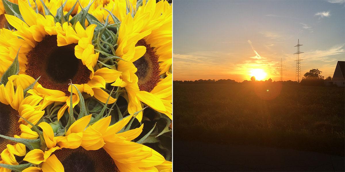dazwischentage, sommer, herbst, vorfreude, herzschmerz, nikesherztanzt, blog