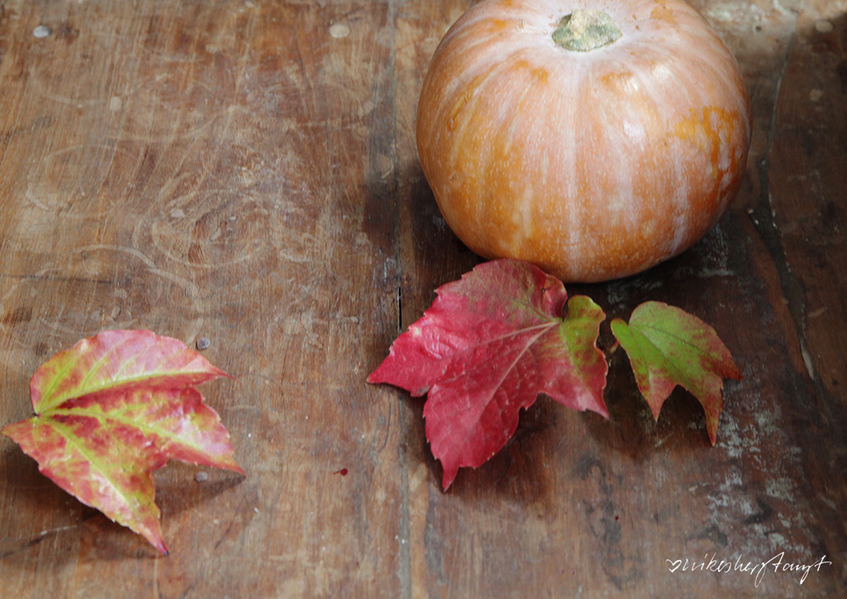 Kürbis, Pancakes, Pfannkuchen, Pumpkin Spice, Herbst, Zimt, vegan, Food, Blog, nikesherztanzt,
