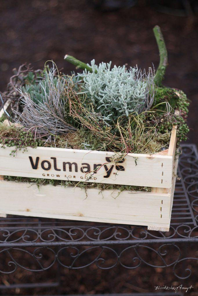 volmary, münster, garten-blogger-treffen, plant happy, pflanzen, gardening, nikesherztanzt, blog