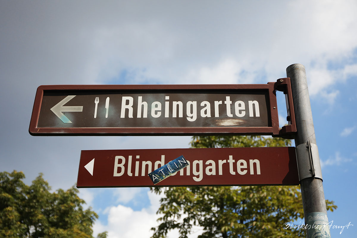 ein tag in ... bonn, #nikeunterwegs, städte, nrw, trip,