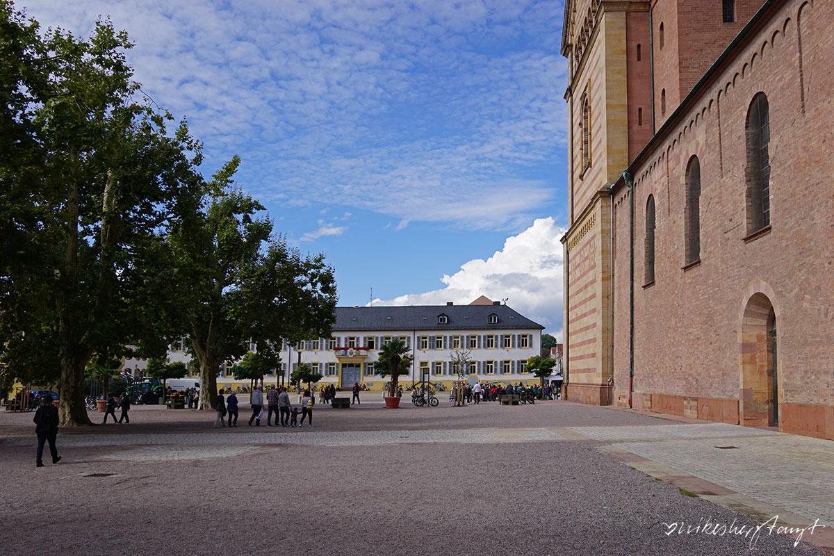 vom lindner hotel & spa binshof mit dem fahrrad nach speyer - eine bilderreise // nikesherztanzt