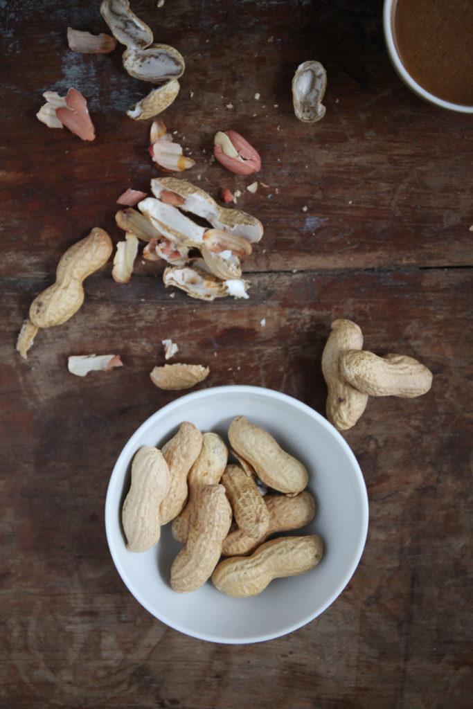 erdnüsse schale holzuntergrund
